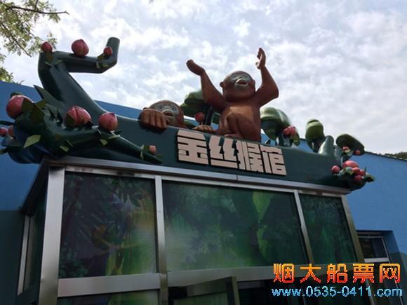 """""""金丝猴馆""""正式在大连森林动物园开门纳客"""